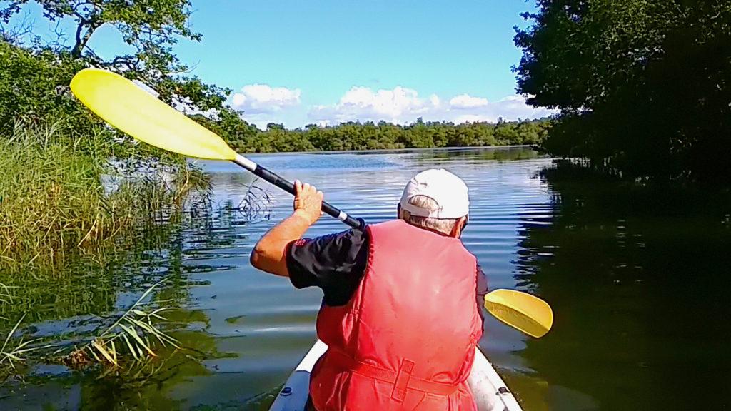 location de Kayak sur les marais du lac de Biscarrosse