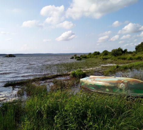Panoramique du lac de Biscarrosse Parentis